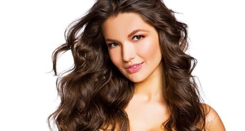 Shekhovtsova Lina model