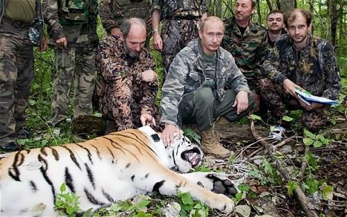 Putin in Barabash