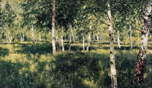 Birch Grove, 1888