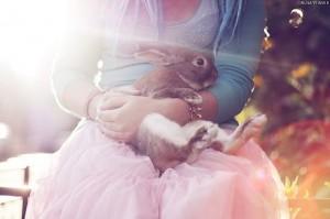Cute rabbit by Alisa Verner