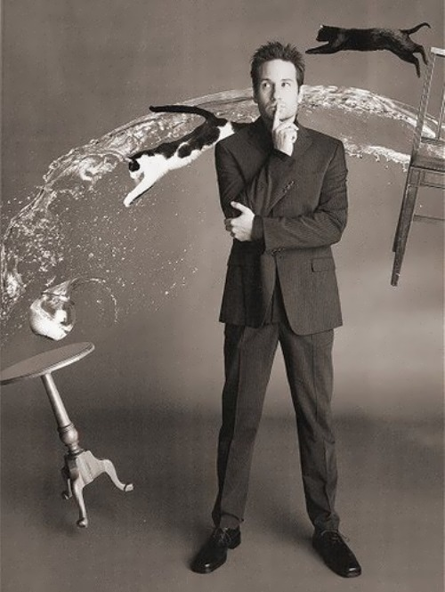 David Duchovny handsome actor