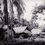 Papuan's hut
