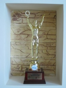 mister russia award