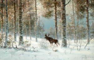 Elk in winter forest. 1909