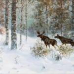 Family of elks