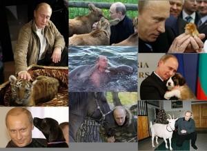 putin animal lover