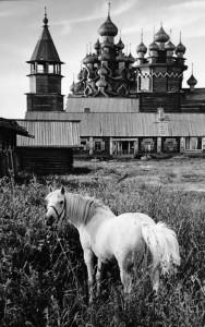 Horse and Kizhi Vasily Peskov
