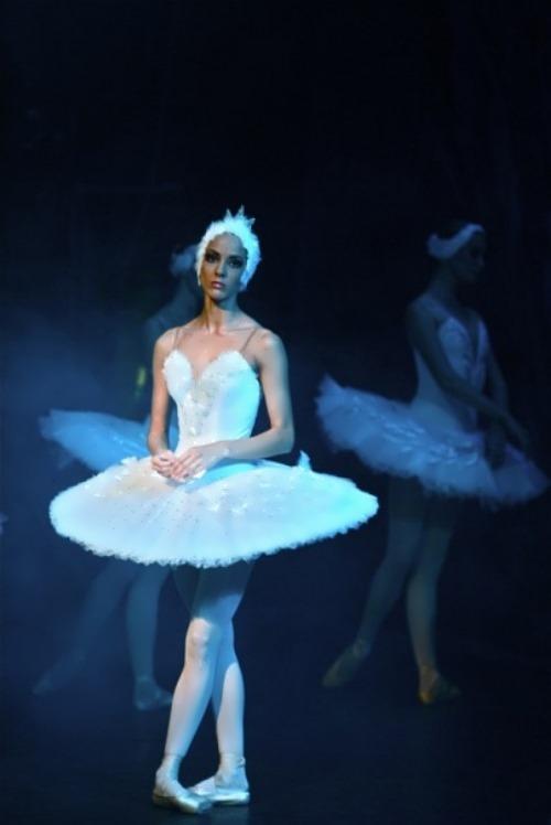 skya sofya white swan