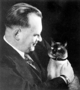 Alekhine Cat