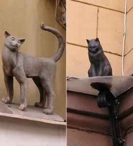 Cat Elisha and lady-cat Vasilisa