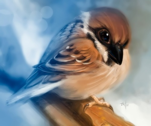 panina kira sparrow