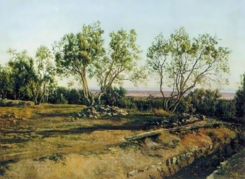 Olive at the cemetery in Albano Alexander Ivanov